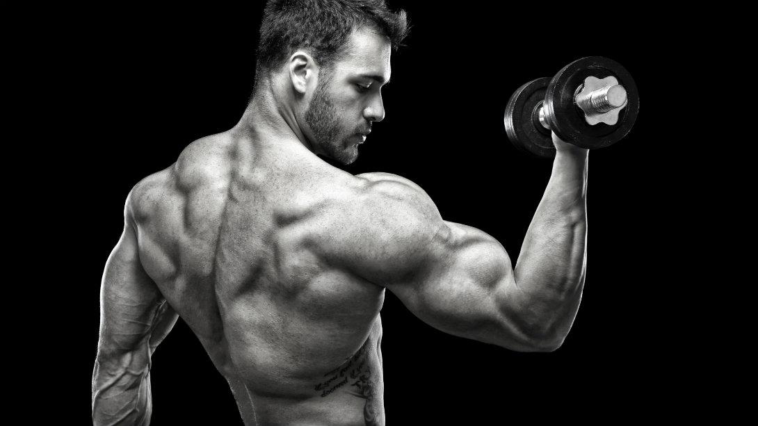 Spieren en meer
